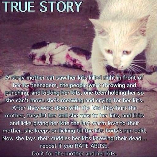 Animal_Abusement_Protest