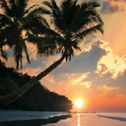 《BeachIsLife》