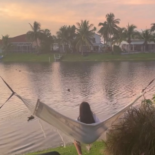 Orchids (Marta)💐🇨🇺🇺🇸