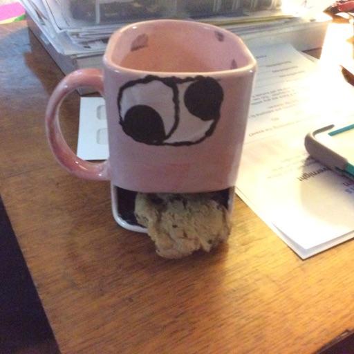 cookie monster 🍪