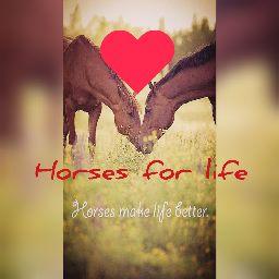 Horses For Iife 🕉🐎🕉
