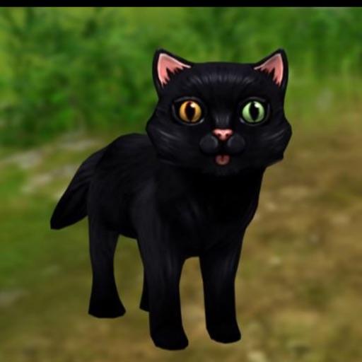 Ur Girl Catty
