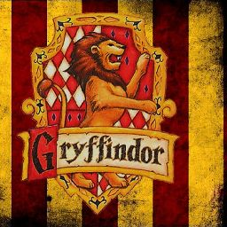 I AM A PROUD GRYFFINDOR 🦁