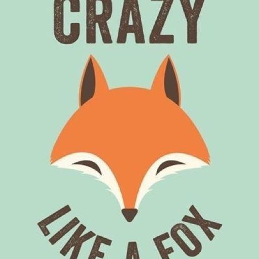 crazzy Fox 🦊