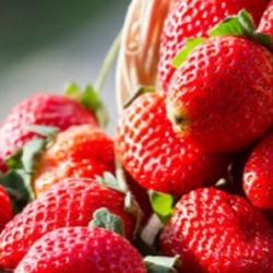 strawberry99