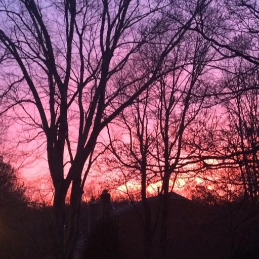 Sunset_artist💕