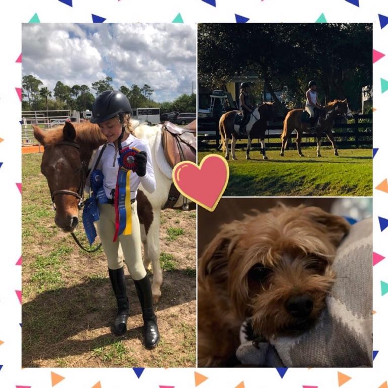 🐴_equestrian_athlete_🥎