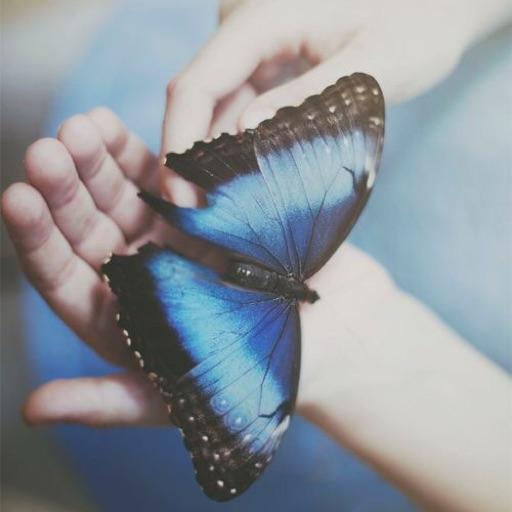 🦋 blu 🦋