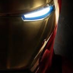 Tony Stark™