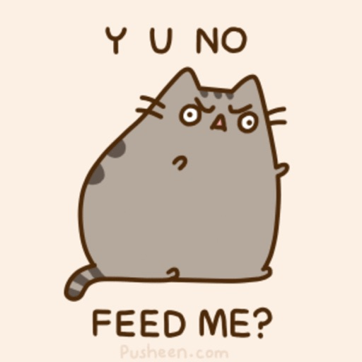 Pusheen the fat cat