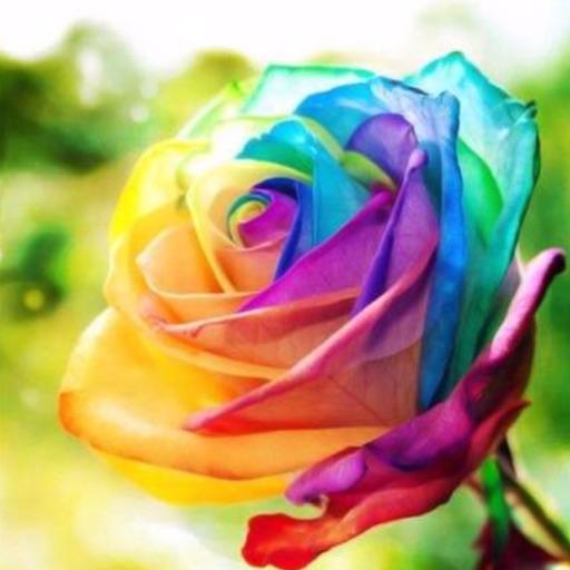I 💜 recolor
