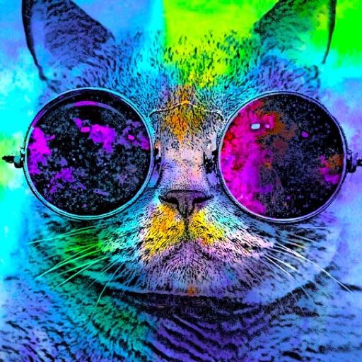 KittyKat111