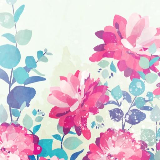 Cutie Colours