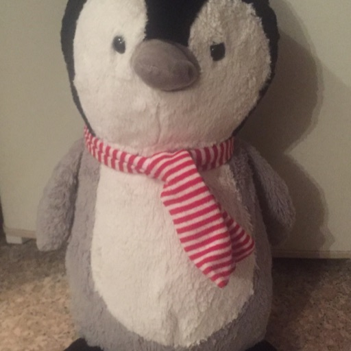 penguin chick 🐧🐥