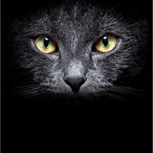 Kittygirlpink
