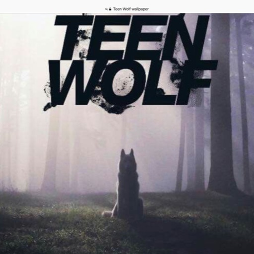 🐺TEEN WOLF IS AWESOME🐺