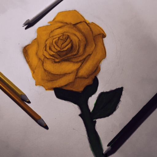 Color_Artist