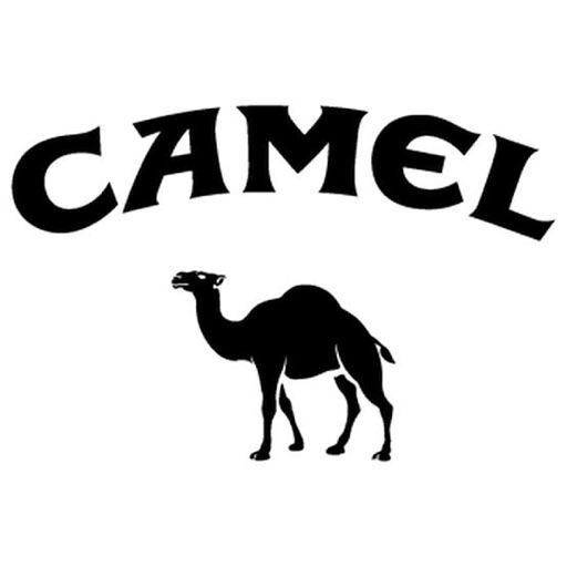 The Camel Lord