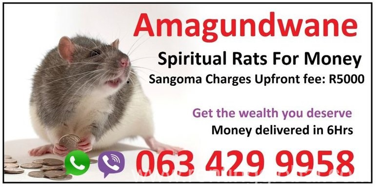 www.rentingglobal.com, renting, global, Durban, South Africa, love spells,money spells,sangoma,spiritual rats, Same day Money spells that work faster usa sandawana oil Amagundwane (@ spiritual rats) +27634299958