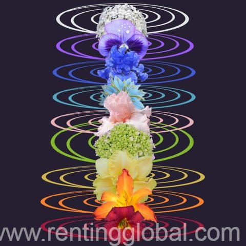 www.rentingglobal.com, renting, global, 26845 Codogno, Province of Lodi, Italy, traditional healers,spiritual healer,sangoma,love spells,witchcraft spells,hex removal spell,marriage spells,protection spell,money spells, African powerful traditional healer lost love spell sangoma whatapp/call +27634299958