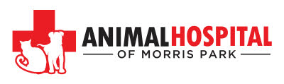 Animal Hospital of Morris Park  logo