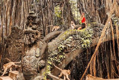 Kintamani Trip II foto