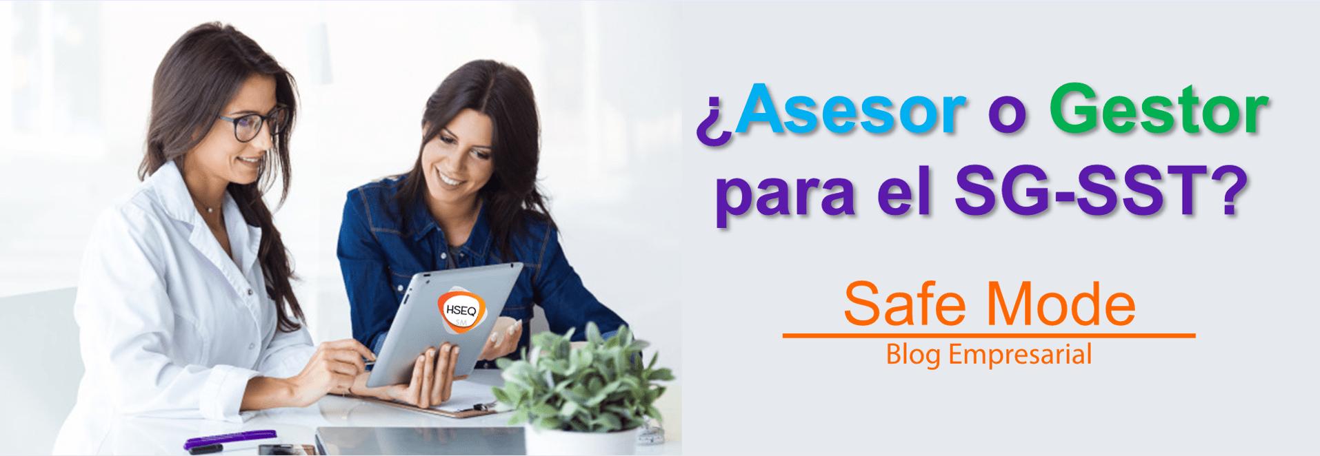 asesoría o gestion del SGSST
