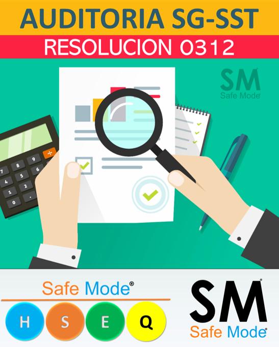 Auditoría anual  de resolución 0312
