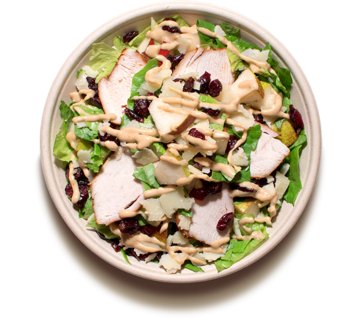 salaty/ FALL CAESAR