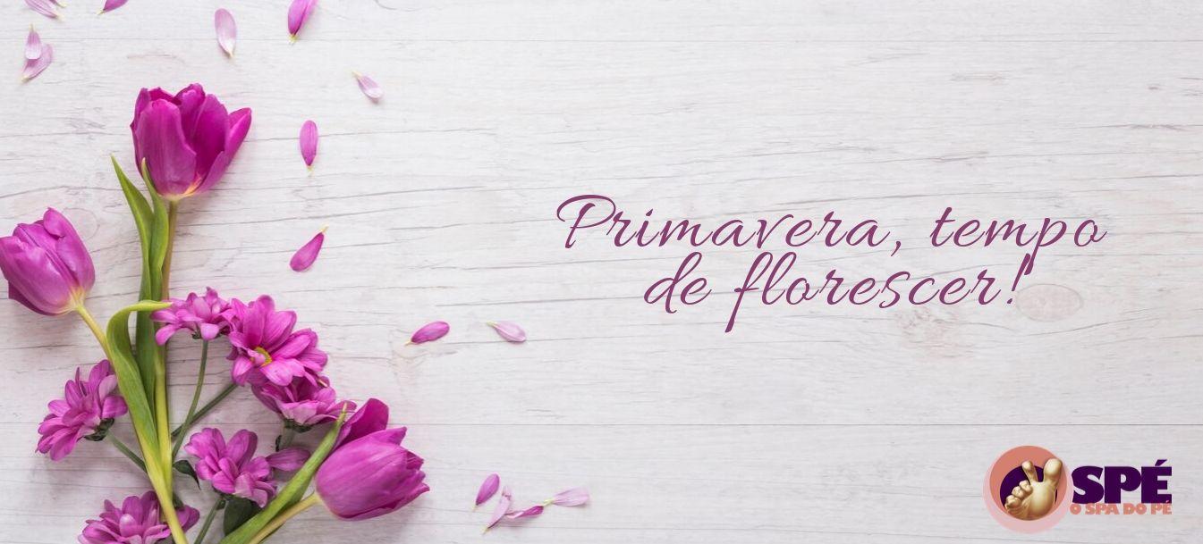 primavera, florecer, franquias, prêmio, pés, Spa do pé, pé