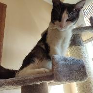 Julia1605