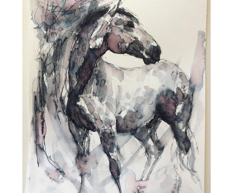Online Animal Life Drawing Sessions  2