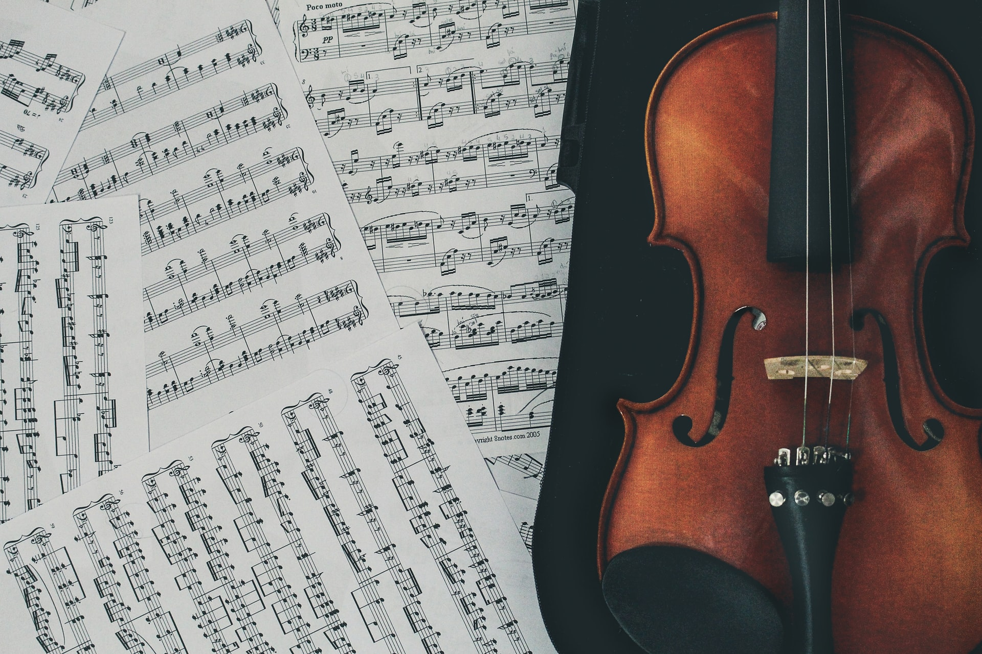 Virtual Beginner String Lessons | Violin & Viola | 23+ Years Playing Experience 2