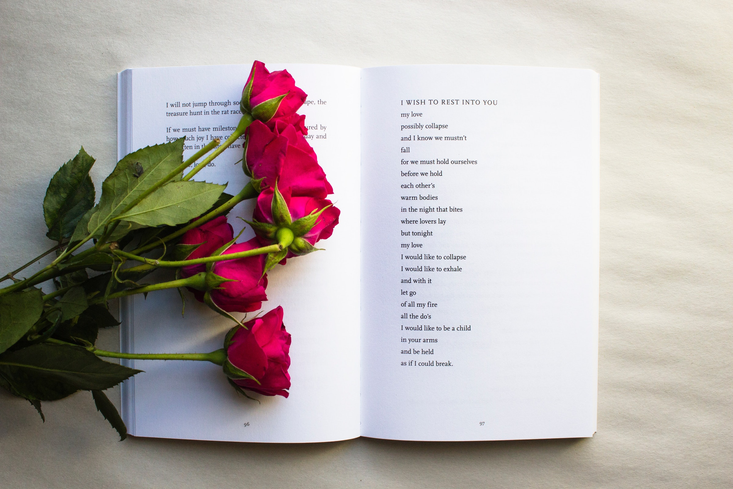 Learn Poetry with an Educator & Published Author | Beginners Welcome 2