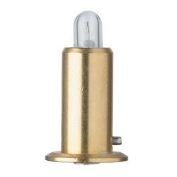 Transilluminator bulb