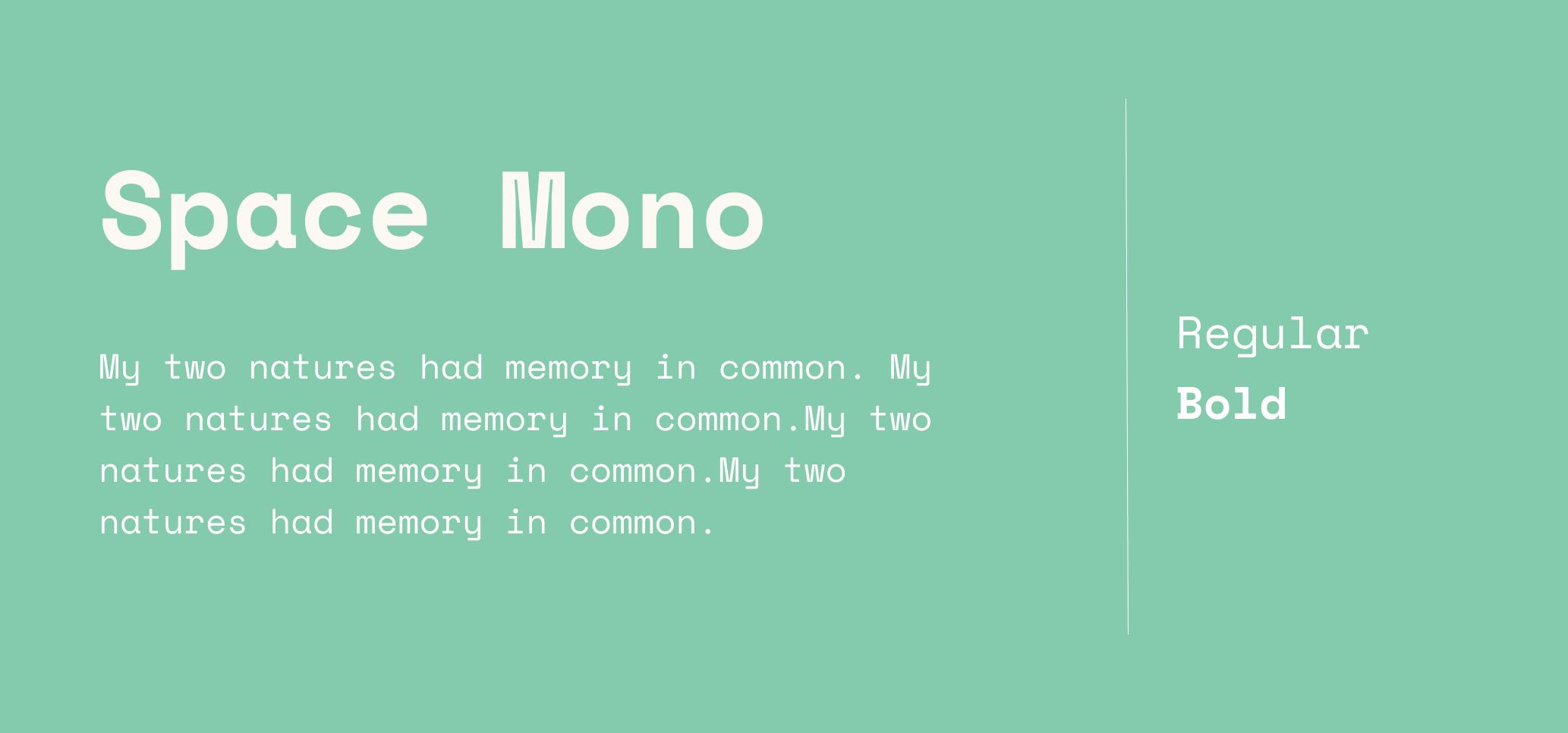 Space mono font