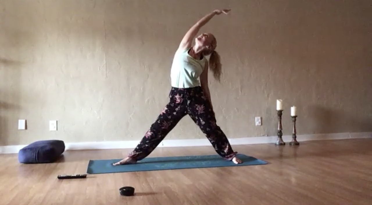 Wellness Yoga for New Moon in Leo   8/8 Lion's Gate
