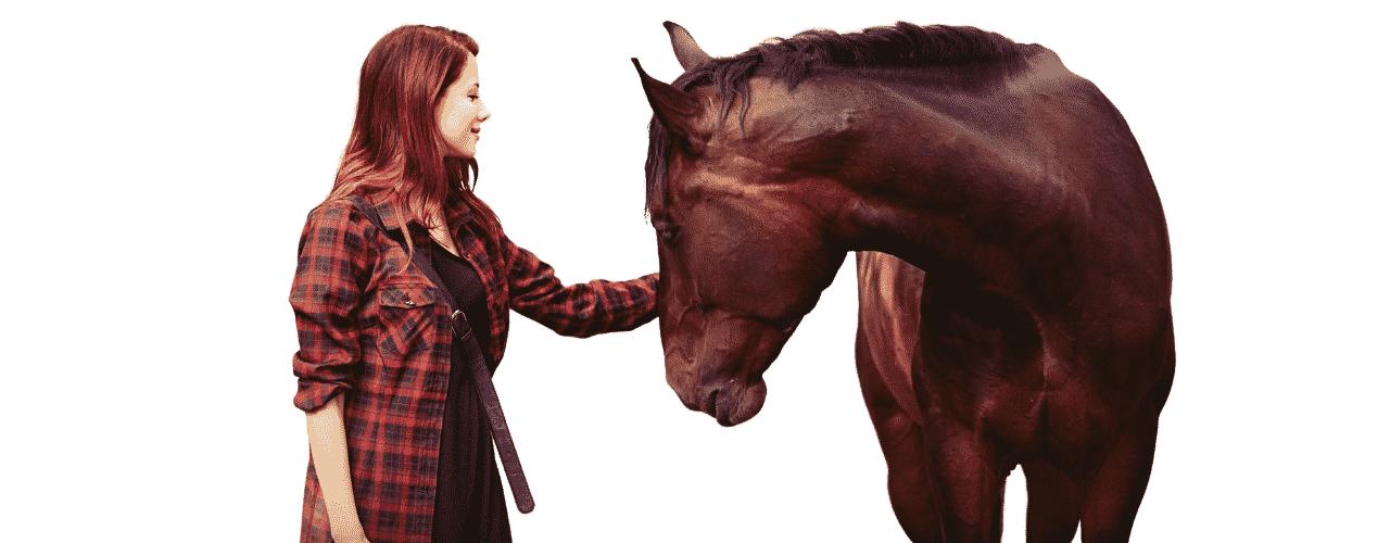 Horsemanship Journal Magazine