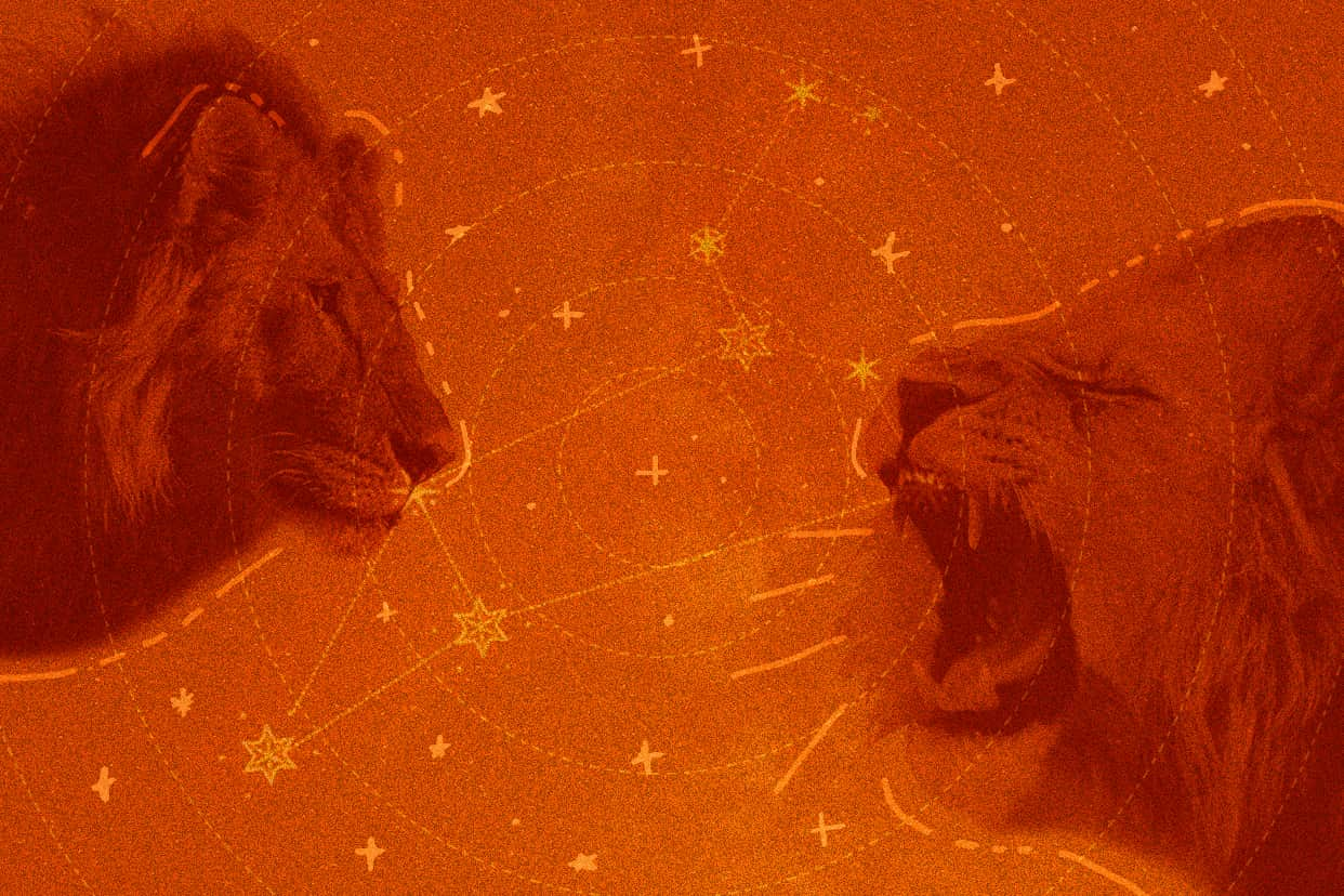 Two growling lions face each other head on over a background featuring the Leo zodiac sign constellation