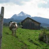 Buronhütte - Grüntensee - Wertachtal - Stich