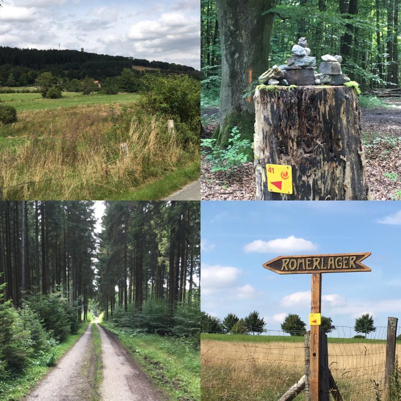 Rüthener Waldrunde Nr. 41