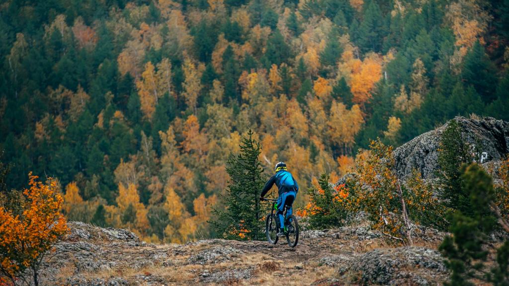 Vallåsen Bike Park #9 - DH Spåret