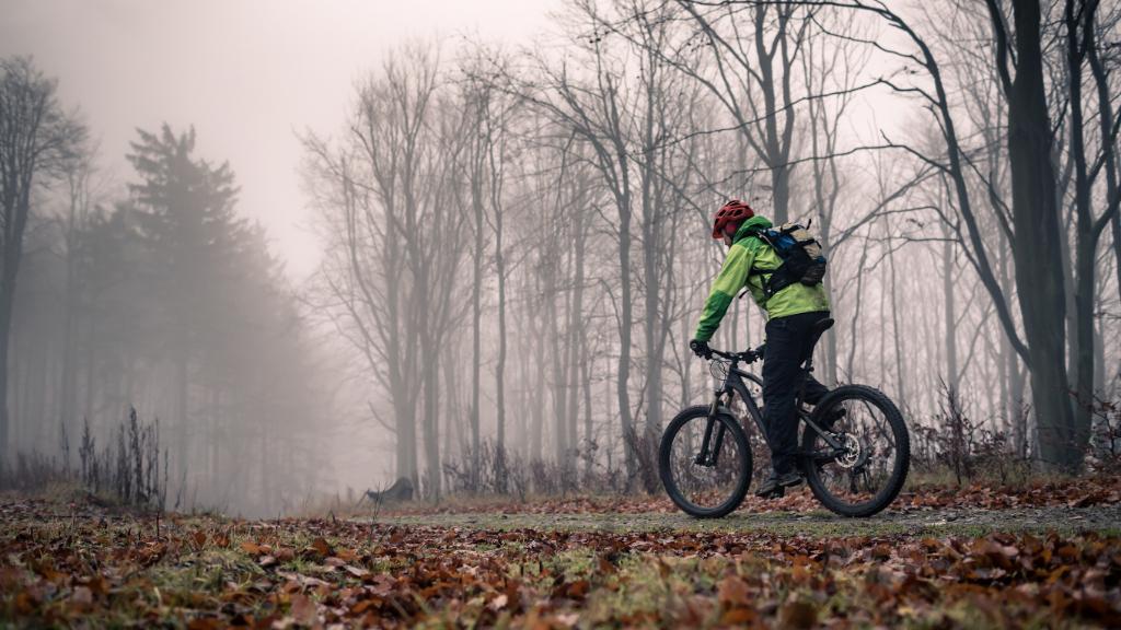 Vallåsen Bike Park #1 - V Line