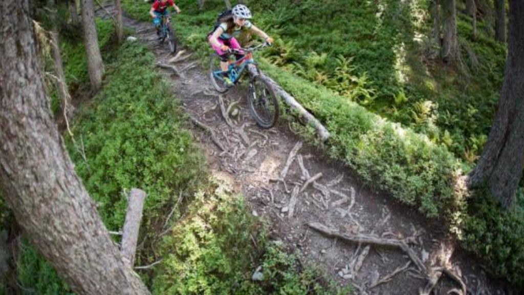 Wurzel Trail