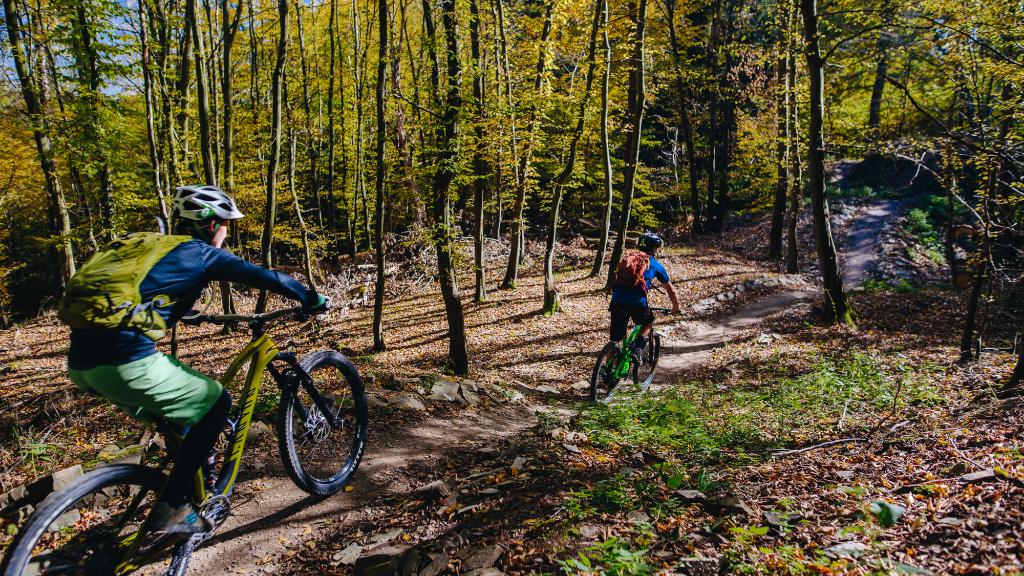 Singlekras Jedovnice: Uphill trail