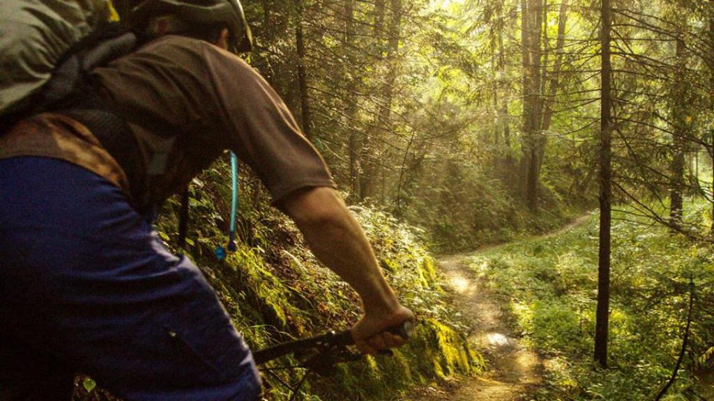 Trail podél Černého potoka