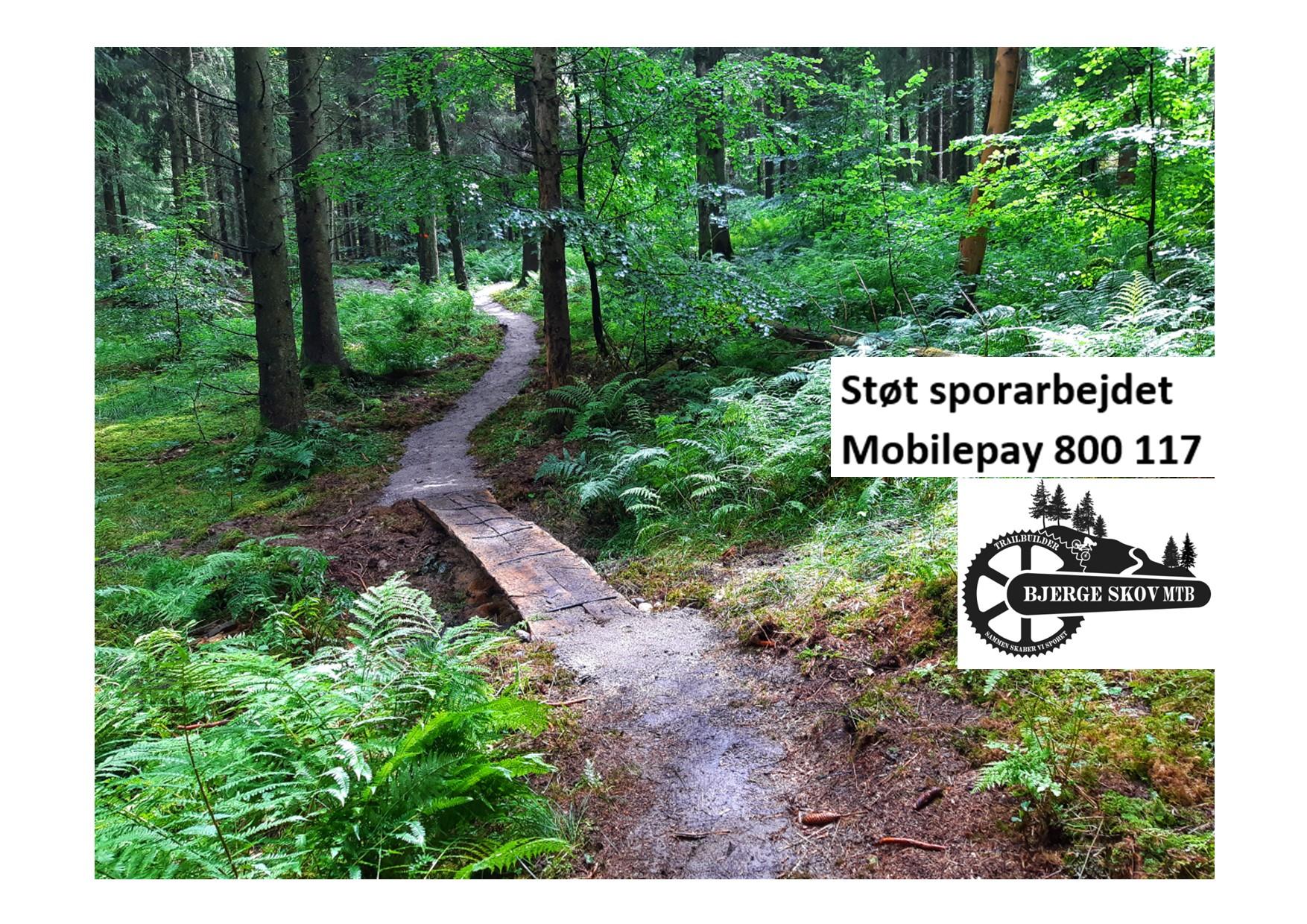 Bjerge Skov MTB ved Bjerre  -Hele sporet med sort og rød