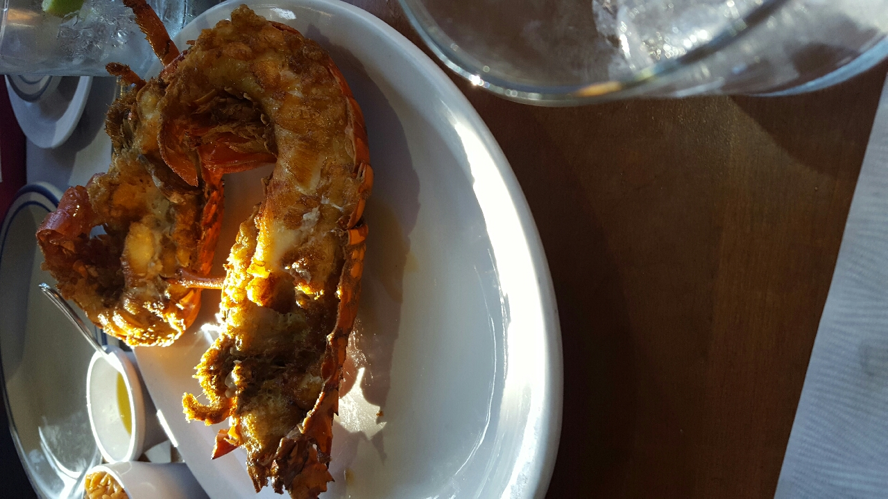 royal lobster in #mexico