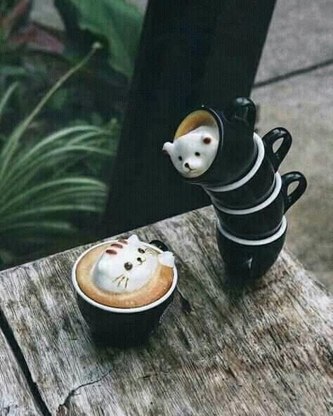 #cafe latte