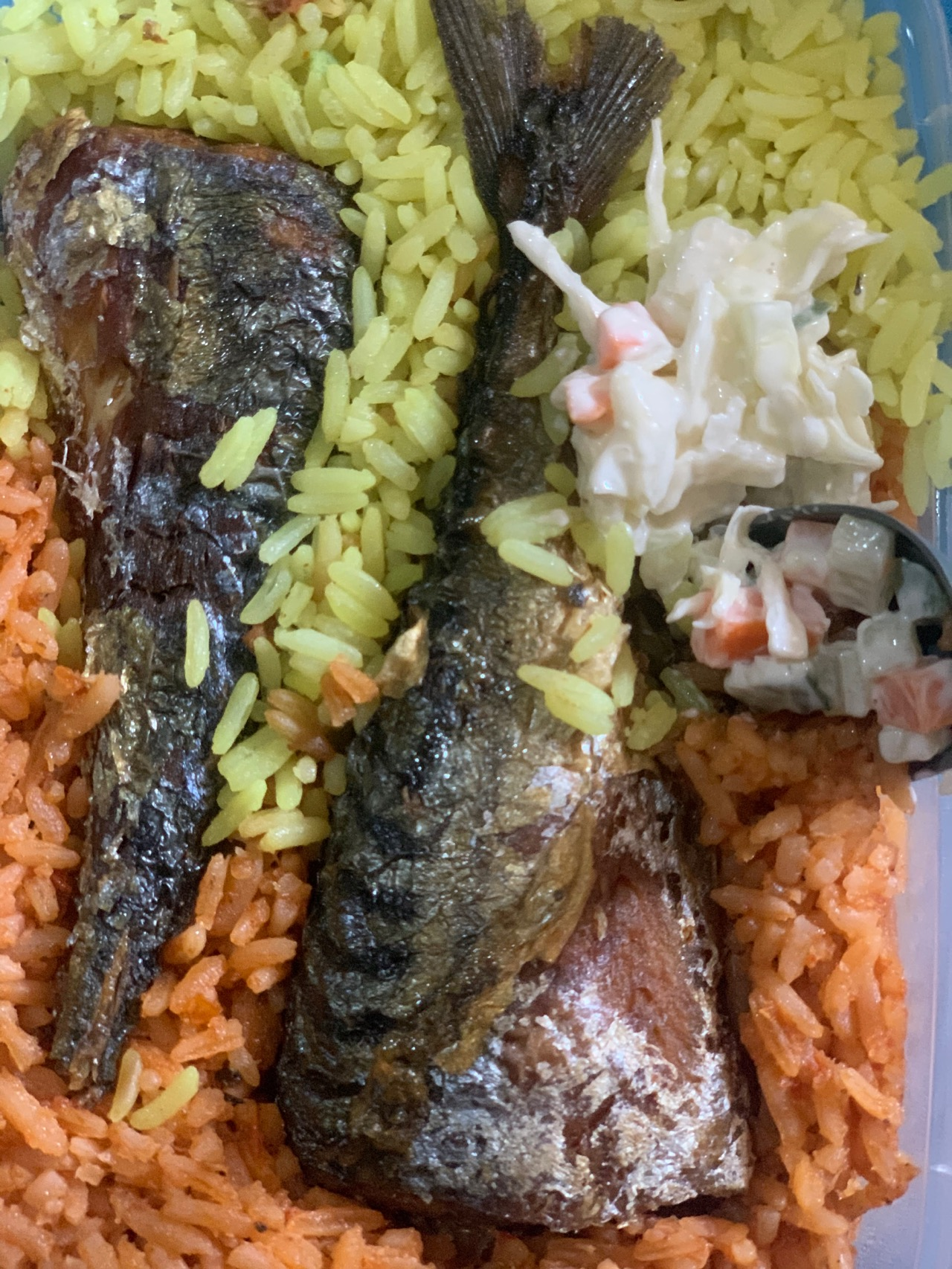 #cookingrecipehq jollofrice,fried rice with fried Titus fish with salad😋😋😋